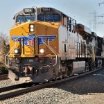 Western visitor shines in Bound Brook's late winter sun